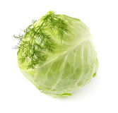 Fresh cabbage on white background Royalty Free Stock Photo
