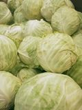 Fresh cabbages Stock Image