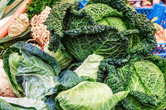 Fresh Cabbages Arrangement Royalty Free Stock Image