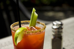 Fresh Caesar or Bloody Mary Cocktail drink Royalty Free Stock Image