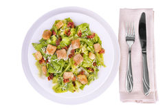 Fresh caesar salad Royalty Free Stock Photos