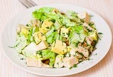 Fresh caesar salad Royalty Free Stock Images