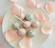 Fresh cake pops on white plate. With rose petals Stock Photos
