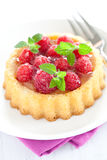 Fresh cake with raspberries Royalty Free Stock Photos