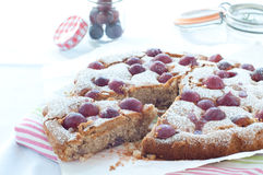 Fresh cake with red grape season and icing sugar. From italy royalty free stock images