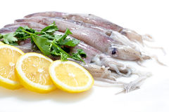 Fresh Calamari with Lemon Stock Photos