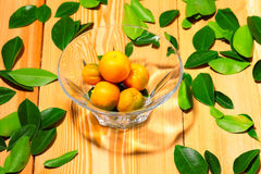 Fresh calamondin fruits in the vase Royalty Free Stock Photography