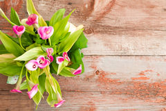 Fresh Calla Lilies on Table with Copy Space Stock Image