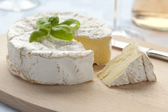 Fresh Camembert cheese Royalty Free Stock Image