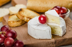 Fresh camembert from organic farms. With red grapes and toasted baguette Stock Image