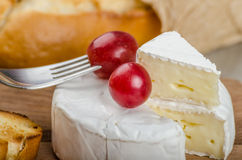 Fresh camembert from organic farms Stock Photography