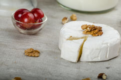 Fresh camembert from organic farms Stock Images