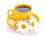 Fresh camomile flowers and camomile herbal tea Royalty Free Stock Images