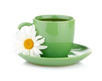 Fresh camomile flowers and camomile herbal tea Royalty Free Stock Image