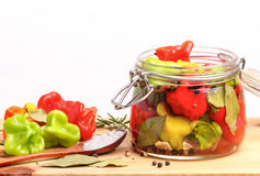 Fresh and canned hot peppers Stock Photos
