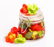 Fresh and canned hot peppers Stock Image