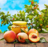 Fresh and canned peaches Royalty Free Stock Image