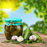 Fresh and canned pickles and garlic Stock Image