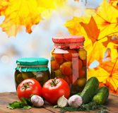 Fresh and canned vegetables with herbs Royalty Free Stock Photography