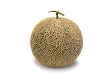 Fresh cantaloupe melon isolated on white background. Sweet fruit Royalty Free Stock Photography
