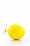 Fresh Cantaloupe melon. Royalty Free Stock Photography