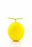 Fresh Cantaloupe melon. Stock Image