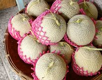 Fresh cantaloupe for sale Stock Photo