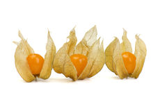 Fresh cape gooseberry Royalty Free Stock Photos