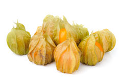 Fresh cape gooseberry isolated on white Stock Image