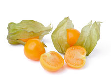 Fresh cape gooseberry isolated on white Stock Images