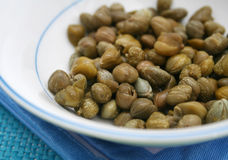 Fresh capers. Some fresh green capers in a bowl Royalty Free Stock Images