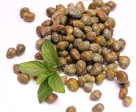 Fresh capers Royalty Free Stock Images