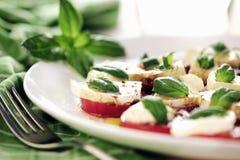Fresh caprese salad with delicious tomatos + mozzarella and bas Stock Photos