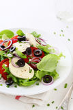 Fresh caprese salad with olives royalty free stock images