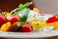 Fresh Capresse Salad Stock Images