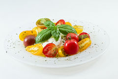 Fresh Capresse Salad Royalty Free Stock Photography