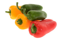 Fresh Capsicum Stock Image