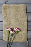 Fresh carnation flowers on hessian canvas. Royalty Free Stock Photos