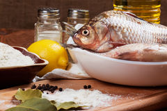 Fresh carp Stock Photos