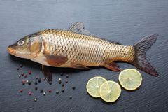 Fresh carp on black cutting board. Fresh carp with peppers and lemon on black cutting board Stock Photography