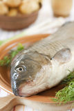Fresh carp on a clay plate Royalty Free Stock Images