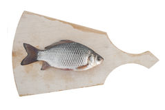 Fresh carp is on the cutting board. Fresh fish on a cutting board Royalty Free Stock Images