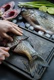 Fresh carp on a dark background with greens and vegetables. A man cuts carp into pieces on a wooden board royalty free stock photography