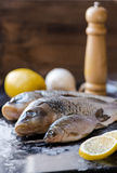 Fresh carp fish with lemon and spices on black board. Fresh carp fish with lemon and spices Royalty Free Stock Photography