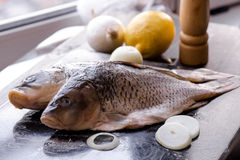 Fresh carp fish with spices and lemon. Fresh carp fish with lemon and spices Royalty Free Stock Photography