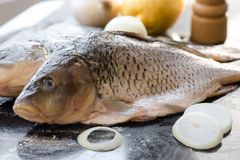 Fresh carp fish with spices and lemon. Fresh carp fish with lemon and spices Royalty Free Stock Images