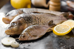 Fresh carp fish with spices and lemon. Fresh carp fish with lemon and spices Royalty Free Stock Image