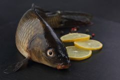 Fresh carp with peppers and lemon on black cutting board. Fresh carp with peppers and lemon. Closeup Royalty Free Stock Images