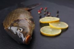 Fresh carp with peppers and lemon on black cutting board. Fresh carp with peppers and lemon. Closeup Royalty Free Stock Photo
