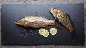 Fresh carps on black cutting board. Fresh carps with peppers and lemon on black cutting board Stock Photography